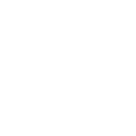 Dunlop Junior Canvas High Top Trainers Blue