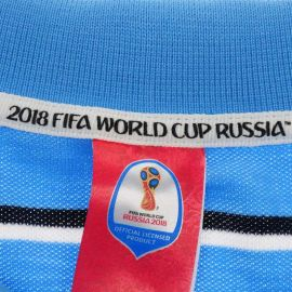 FIFA World Cup Russia 2018 Argentina Stripe Polo Mens Blue/White